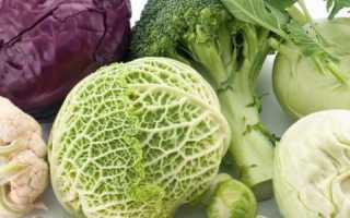 Квашеная капуста при повышенном холестерине – польза продукта