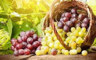 Виноград повышает или понижает артериальное давление?