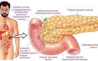 Симптомы заболеваний поджелудочной железы: лечение, причины