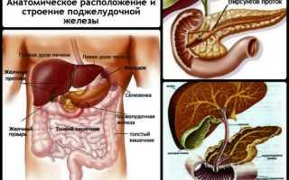 Симптомы заболевания поджелудочной железы у мужчин
