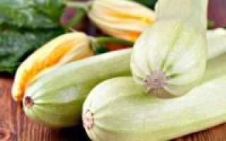 Кабачки при панкреатите: полезные свойства, рецепты