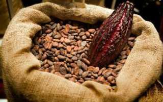 Польза какао при повышенном холестерине: рецепты, отзывы