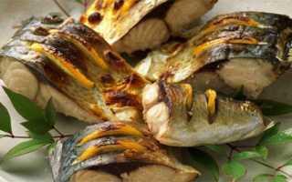 Скумбрия и холестерин – полезные и вредные свойства рыбы
