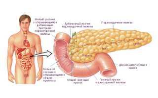Анализы крови при панкреатите: показатели, на что они указывают