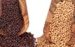Семена горчицы при сахарном диабете 2 типа, их полезные свойства