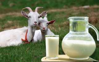 Можно ли пить козье молоко при повышенном холестерине?