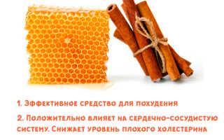 Мед и корица от холестерина – рецепты чистки сосудов, отзывы