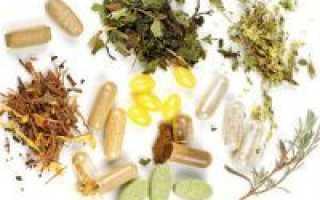 Травы для поджелудочной железы: лечение травяными сборами