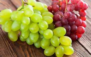Можно ли есть виноград при панкреатите или нет