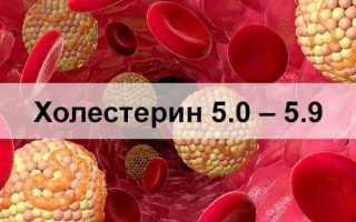 Холестерин 5,0 – 5,9 чем опасен, что делать, требуется ли лечение